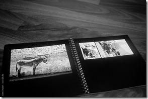 20111218-iso125-photobox-007